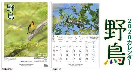 2020年野鳥カレンダー